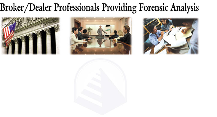 Expert Forensic Analysis Reports Testimony Securities Fraud